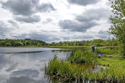 Boyle lake