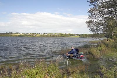 03 Swan Lake Gowna